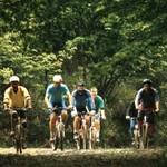 Ride your bike along woodland and coastal pathways