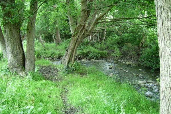 Take a walk along the river Gele