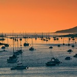 Conwy harbour