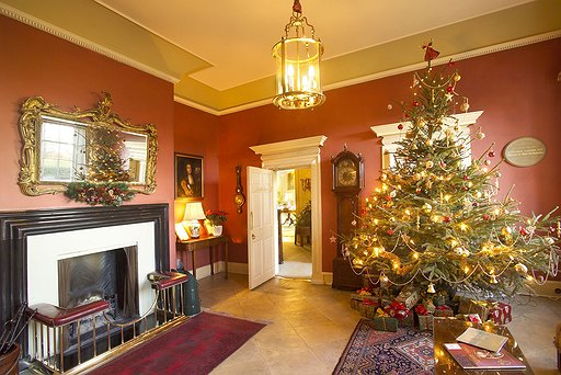 Christmas Tree Front Hall